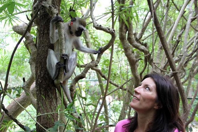 Lucy Cooke with vervet monkey in Diani Beach, Kenya - Image Credit: BBC/Boundless, part of FremantleMedia UK